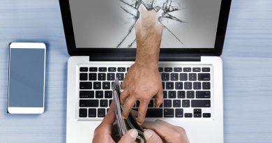 Online thief